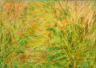 trawy_2003
